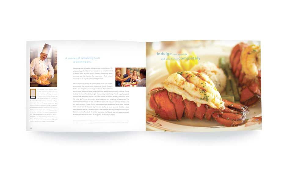 Brochure Design Extension for Princess Cruises